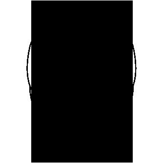Primates Mandrillus