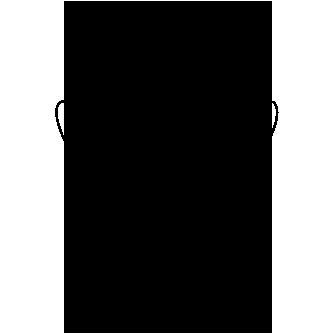 Primates Kandti